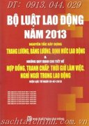B LUT LAO NG NM 2013 - NGUYN TC XY DNG THANG LNG, BNG LNG...